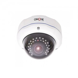2 MP IP IR Vandal Dome Kamera